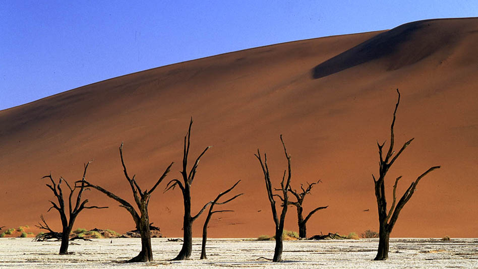 13_1200px_namibia_home