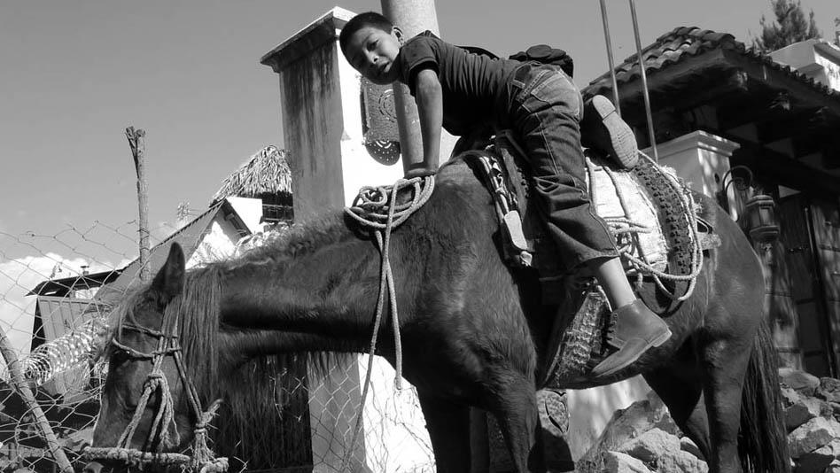 P1010460_horsekid_home