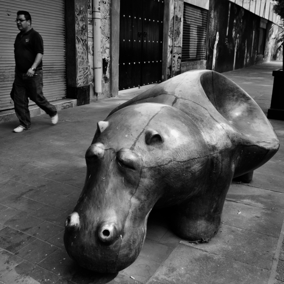 Why make a standard boring bench that could seat four for about a hundred bucks when you could have a fancy two-seater hippo-shaped bronze contraption? Because Mexico City supports its artists, which is more and better than can be said of most places...