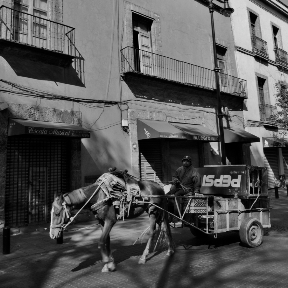 "Horse drawn carts still make their rounds in congested Mexico City. This gentleman was out to purchase scrap - old computers, television sets, refrigerators - from the residents of the historic city center. I love the way the refrigerator seems to spell ""ISdEd""."