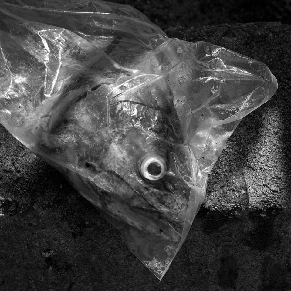 Fisheye lens.