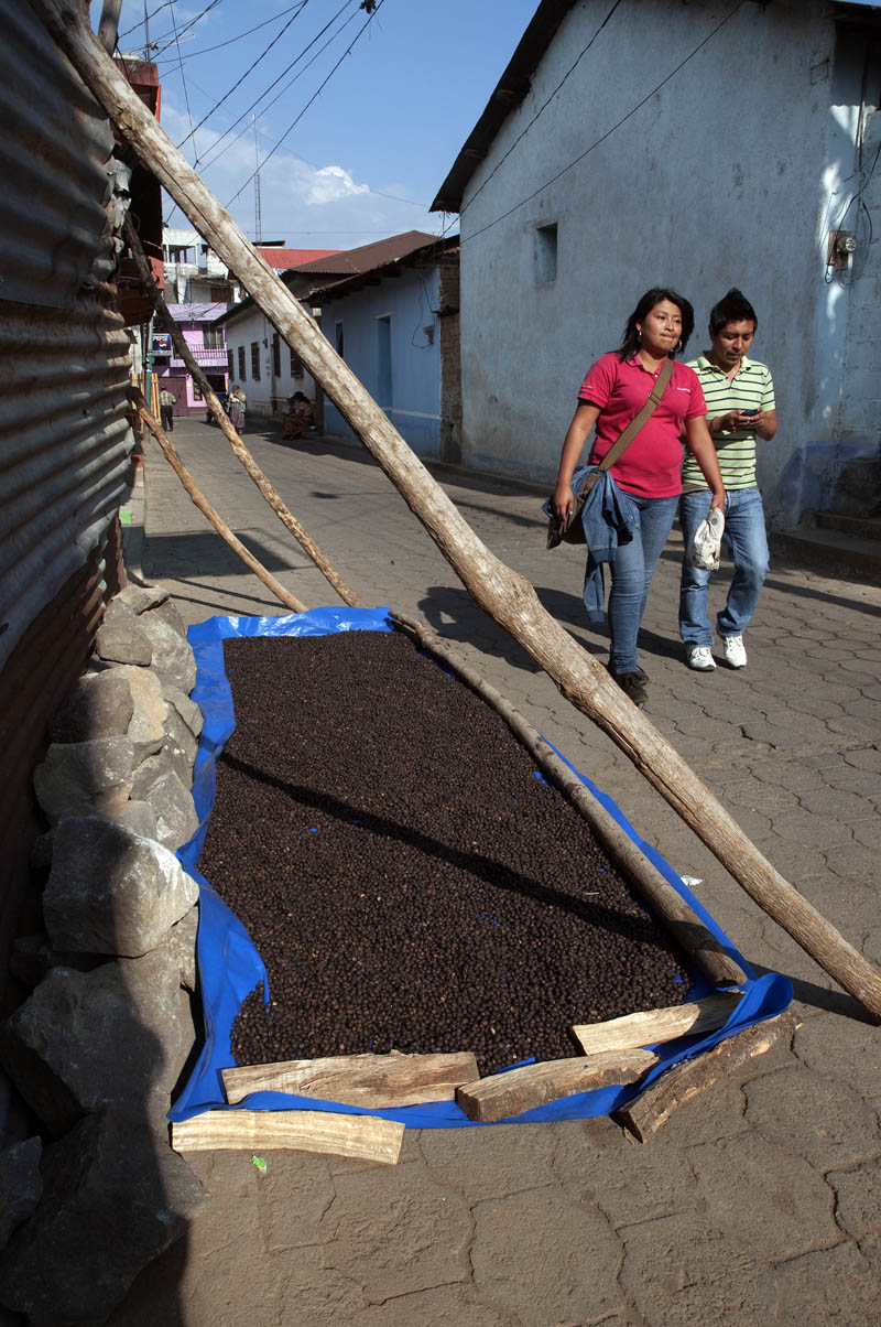 Traditionally, coffee beans are dried with the husks still on the beans, as here, in the streets of San Pedro de la Laguna, Solola', Guatemala.