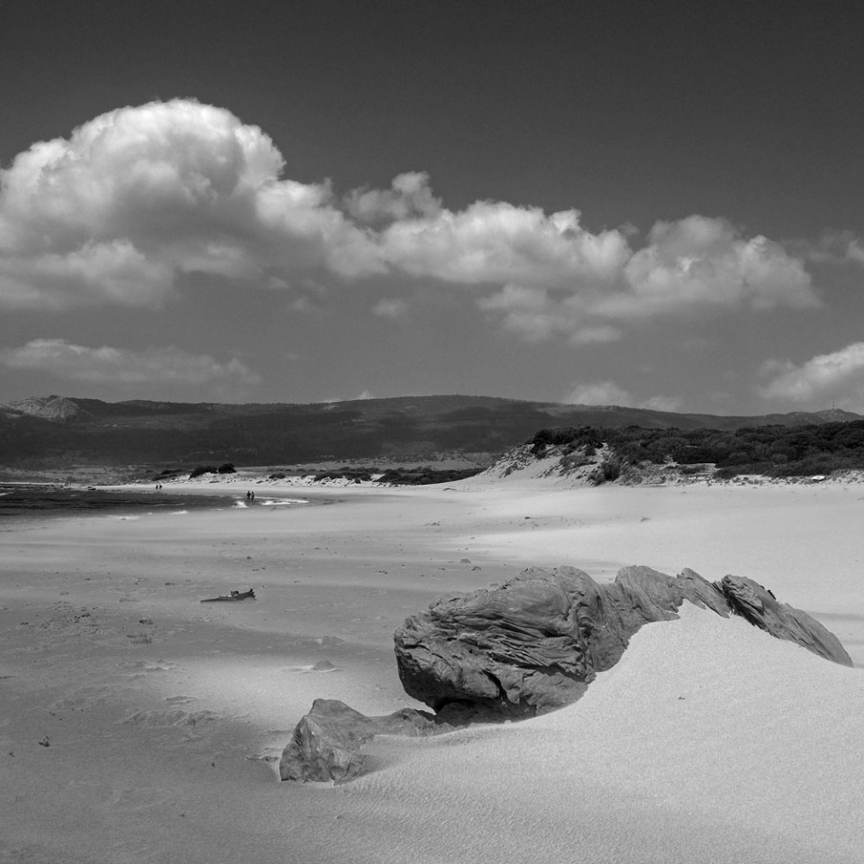 The setting: somewhere between Tarifa and Cadiz, Andalucia, Spain.