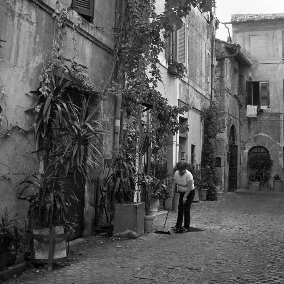 Trastevere: low buildings, tall plants. And if you want the leaves removed, it's do-it-yourself...