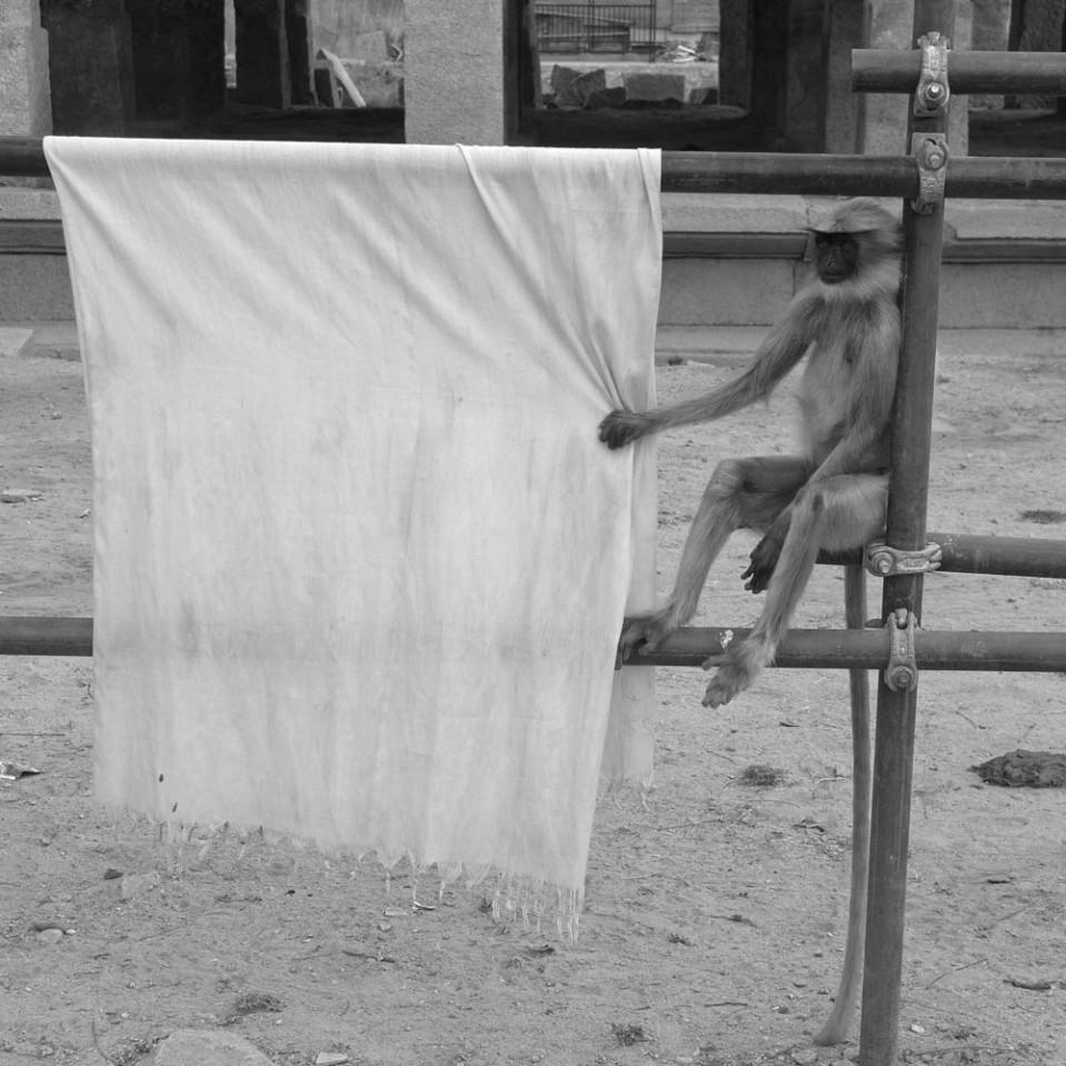 Hmmm. i wonder if my laundry is dry yet...