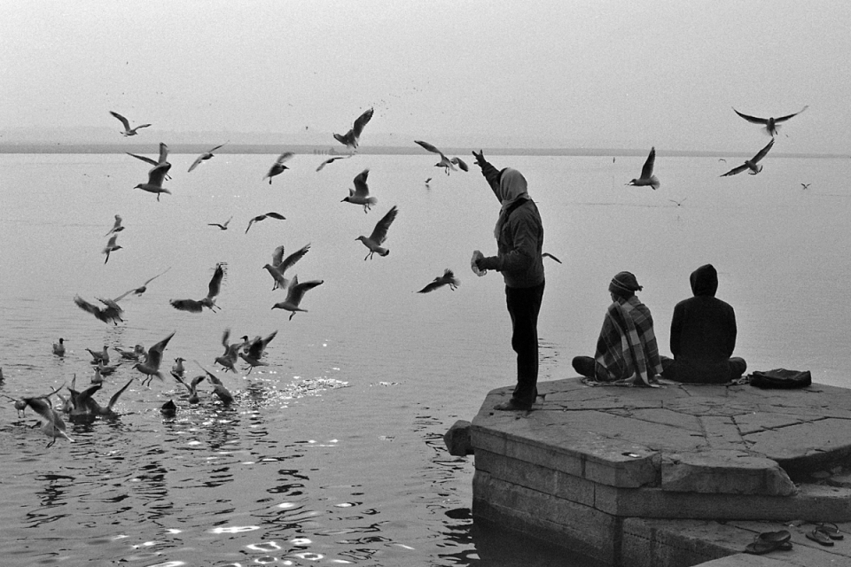 And, this being Varanasi, what's good for the birds is also good for the karma.